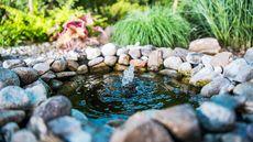 Just Add Water: Fountain, Pond, and Birdbath Ideas for a Calm, Cool Yard This Summer