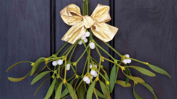 Mistletoe can be deadly if you eat it. (But a kiss can be even deadlier if you mean it.)