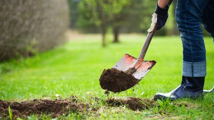 6 Strange Things Homeowners Have Found in Their Yards