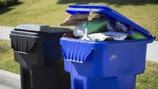 6 Must-Know Recycling Rules That'll Keep You From Doing More Harm Than Good