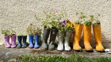 17 Conversation-Worthy Planters Made From Beer Cans, Boots, and Other Castoffs Around the House
