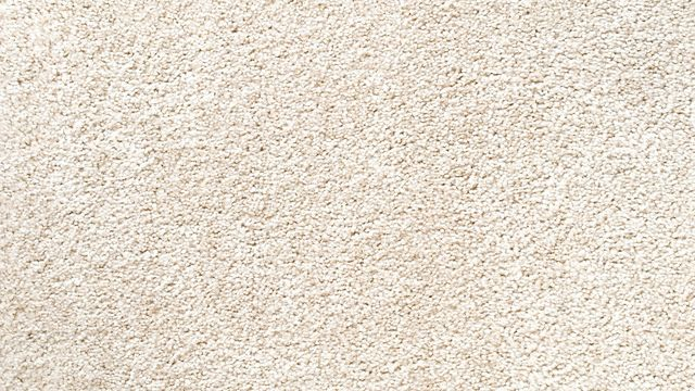 Textured carpeting