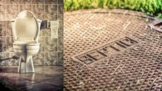 6 Gross Things You Never Knew About Your Septic System