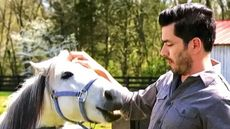Watch Drew Scott Dance (and Fix Up a Horse Farm) on 'Property Brothers: Buying & Selling'
