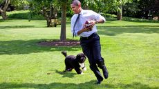 What's the Best Pet for Donald Trump's White House?