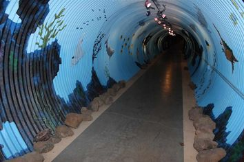 Plan Your Own (Perfectly Legal) Escape: 10 Amazing Tunnel-Touting Homes