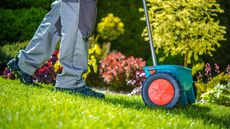 6 Essential Lawn Care Tips To Revive Your Winter-Worn Yard