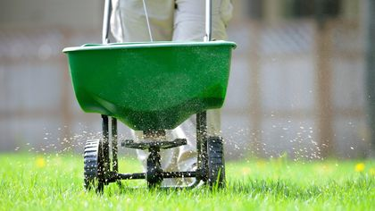 When to Fertilize a Lawn, and How: A Lawn Lover's Guide