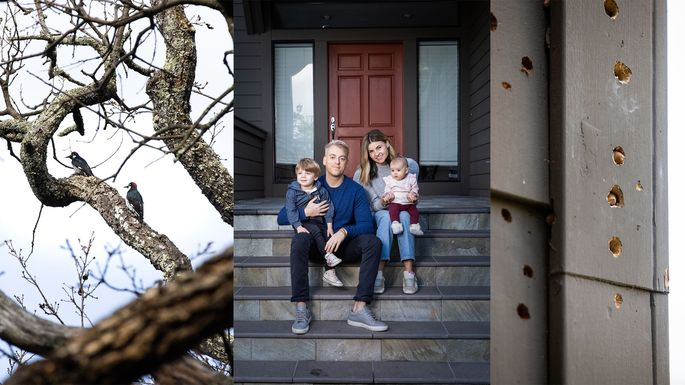 The woodpeckers occupying the trees around the Weiss home destroy the wooden siding. When the family moved in, there were over 90 holes in it. A permanent solution would cost $150,000.