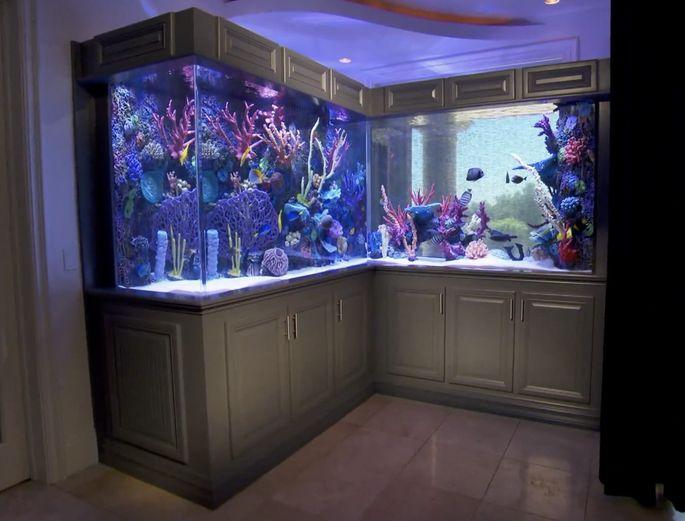 Finished fish tank