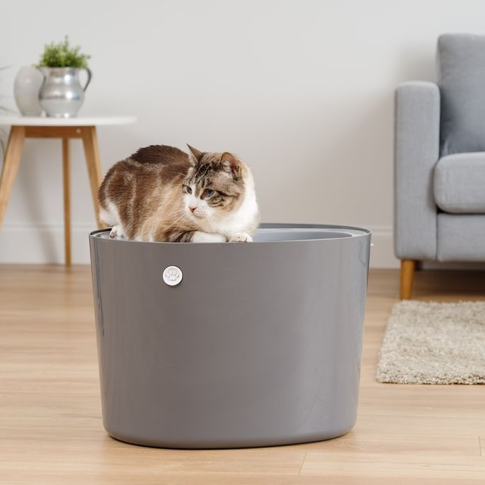 Cats enter through the top of this litter box, keeping mess away.
