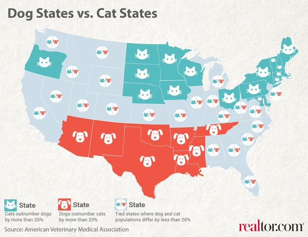 cat states vs. dog states