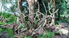 Stumps, Moss, Mushrooms? 8 Strange Garden Trends To Try This Spring