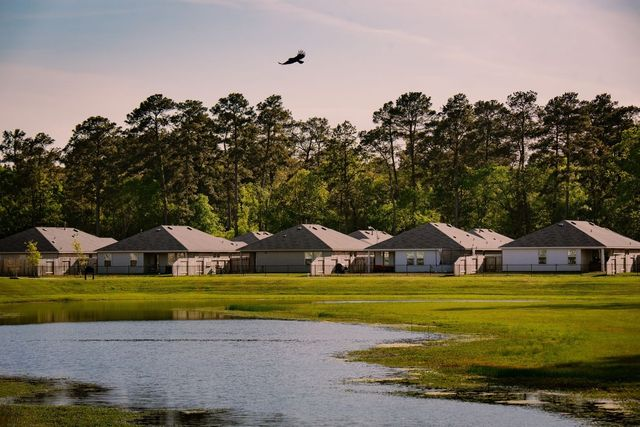 The business of selling entire neighborhoods to investors is illustrated by the Amber Pines at Fosters Ridge subdivision in Texas.